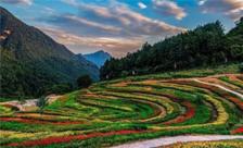微享互动签约万博手机ios百花谷生旅游公众号运营